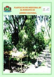 CARTILLA PLANTAS  DE USO MEDICINAL EN ARMERO GUAYABAL