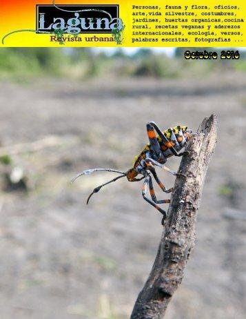Laguna, revista urbana - octubre 2016