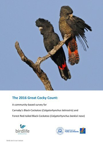 The 2016 Great Cocky Count