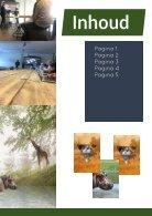 Safari - Page 2