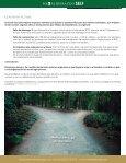 Identidad - Trascendencia - Dirección - Accountability - Consciencia - Page 5