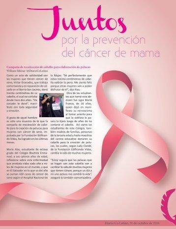 Suplemento cáncer de mama