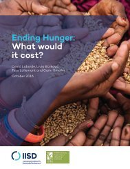 Ending Hunger What would it cost?