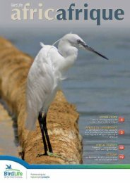 34th Issue - July 2015