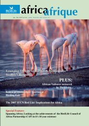 18th Issue - July 2007