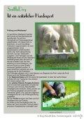 Dog Aktuell Das Hundemagazin 4-2016 - Seite 5
