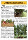 CAMPO EM REVISTA - Page 6