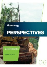 PERSPECTIVES Deforestation - Greenergy