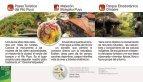 Actividades para disfrutar Sitios de interés Contactos y mapas - Page 6