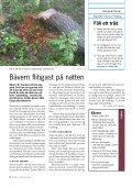 Fäll ett träd - Skogen i Skolan - Page 6