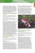 SR16-FINAL-web_v1.1 - Page 7