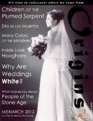 Issue 2: Color & Symbolism
