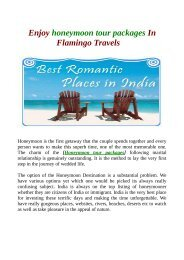 Enjoy honeymoon tour packages In Flamingo Travels