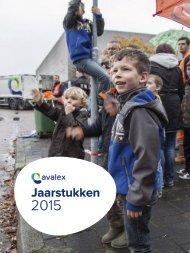 10-A.-Avalex-jaarstukken-2015