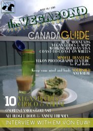 the-vegabond-issue 1