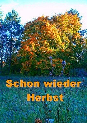 schon wieder Herbst
