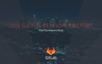 2016 GLOBAL DEVELOPER REPORT