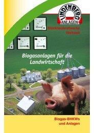 Bio Gas-Flyer - Lindenberg-Anlagen GmbH