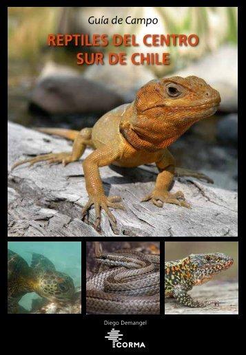 REPTILES DEL CENTRO SUR DE CHILE