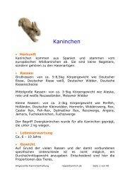 Artgerechte Kaninchenhaltung - RespekTierMich.de