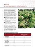 Gemüse Broschüre deutsch - K+S KALI GmbH - Seite 7