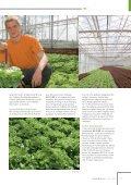 Fresh Convenience, Typ -Multiblatt-Kopfsalat Brassica ... - Rijk Zwaan - Seite 7