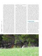 Un seul ours debout - Baptiste Morizot - Page 5
