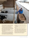 COOPERATIVES - Page 7