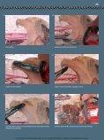 20 Ein Adlerkopf - Holzwerken - Seite 4