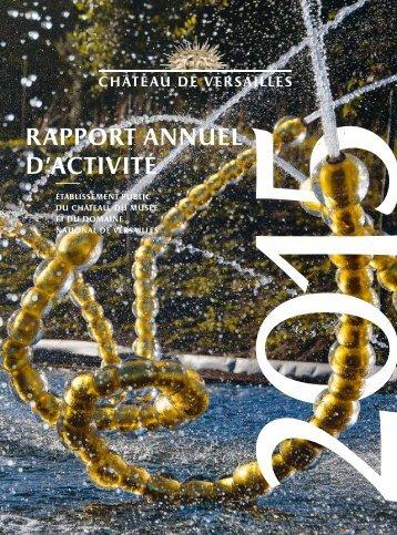 rapport annuel d'activité 2015 rapport de performance