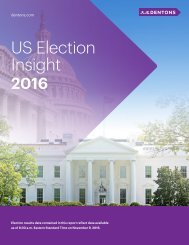 US Election Insight