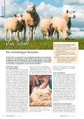 EinSichten in die Tierhaltung - information.medien.agrar eV - Seite 6