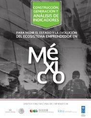 CONSTRUCCIÓN, GENERACIÓN Y ANÁLISIS DE INDICADORES PARA MEDIR EL ESTADO Y EVOLUCIÓN DEL ECOSISTEMA EMPRENDEDOR EN MÉXICO