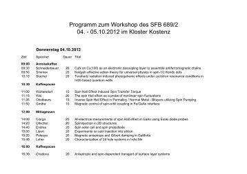 Programm zum Workshop des SFB 689/2 04. - 05.10.2012 im ...