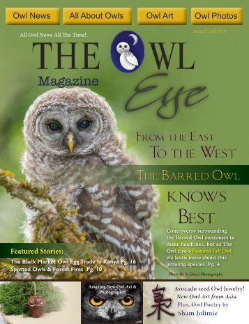 Owl Eye Issue 5_Int