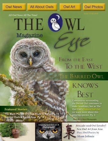 Owl Eye Issue 5_Int