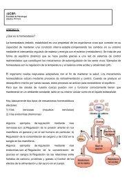 UNIDAD IV - UCSF -