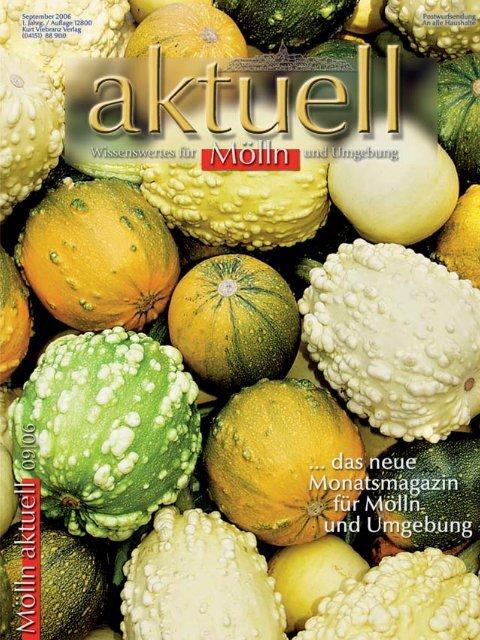 Wir - Kurt Viebranz Verlag
