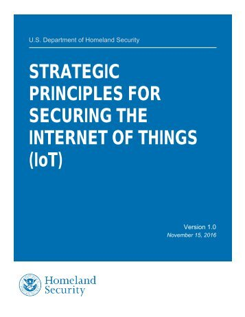 STRATEGIC PRINCIPLES FOR SECURING THE INTERNET OF THINGS (IoT)