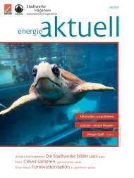 Strom frisst die meiste Energie? - Stadtwerke Hagenow GmbH