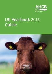 UK Yearbook 2016 Cattle