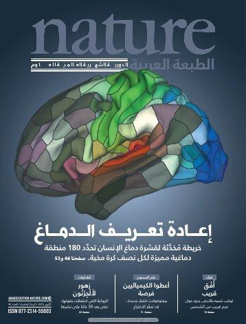 تعريف الدماغ إعادة