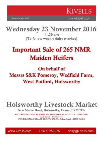 Holsworthy Livestock Market
