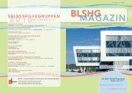BLSHGMagazin2