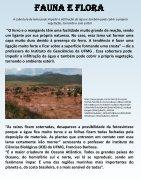 Terra News - Mariana - MG - Page 7