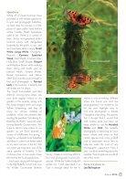 Comma No95 Autumn 2016 - Page 5
