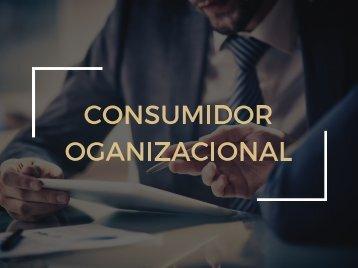 Consumidor organizacional