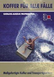 KATALOG-AUSZUG PROFESSIONAL - Prevent AG