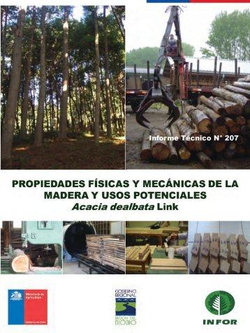 Y USOS POTENCIALES Acacia dealbata Link