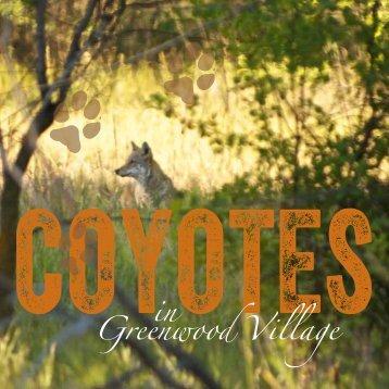 Coyote Brochure